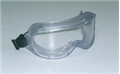 Expanded View Goggle